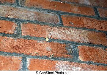 ściana, ćmy, inny, cegła