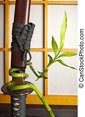 Bamboo and japanese sword