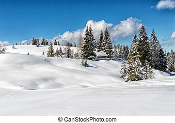 Idyllic winter landscape in the Alps with traditional...