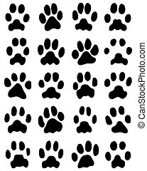 print of cats paws