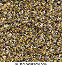 Bees seamless background. - Texture pattern for continuous...