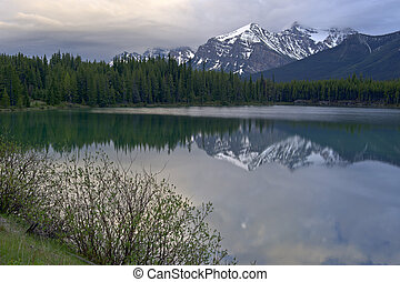 Mountain reflection in Lake Herbert - Early morning mountain...