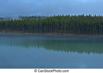 Treeline reflection in Herbert Lake, Banff National Park -...