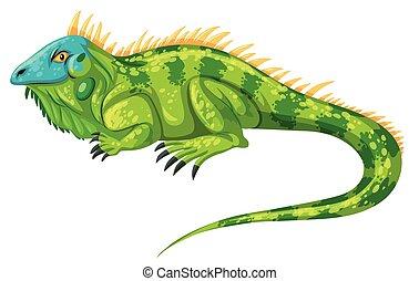 Green iguana crawling alone illustration