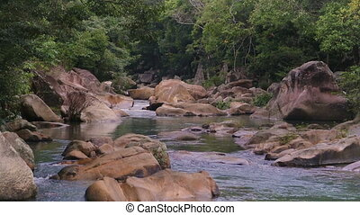 Rapid River in the tropical jungle. Nha Trang Vietnam