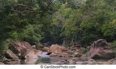 Rapid River in the tropical jungle Nha Trang Vietnam