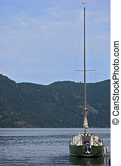 Green sailboat on calm water