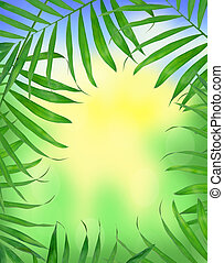 Green leaves of fern over bright nature background