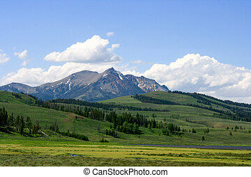 Hilly Landscape - A hilly landscape in Yellowstone National...
