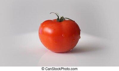 Fresh tomato rotation