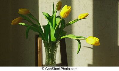 Faded yellow tulip buds raised after the addition of fresh...