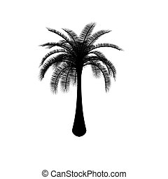 Black on white palm tree on white background