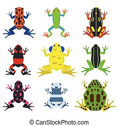 Frog cartoon tropical animals and green nature icons - Frog...