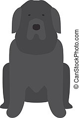 Black Labrador retriever dog domestic animal vector...