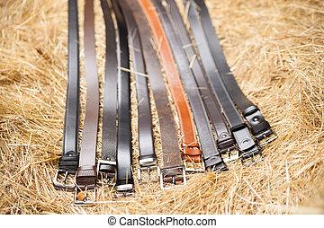 Men belt black - Men's belt black close-up on a background...