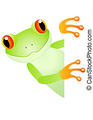 Green frog and blank space