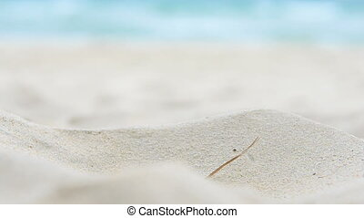 Closeup Sand Motion on Small Dune on Sea Beach - closeup...