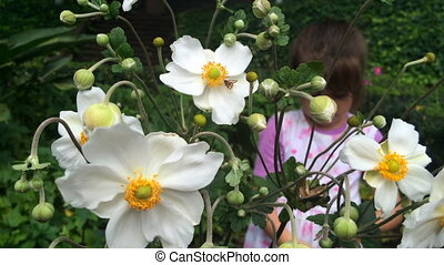 Girl looks at flowers - Little girl looks at butterfly on a...