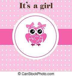 baby owl  - baby owl