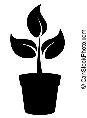 Pot - plant in a pot silhouette