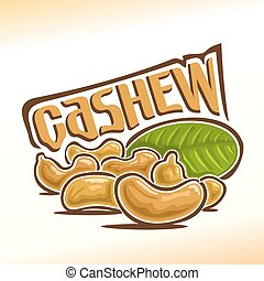 Vector illustration of cashew - Vector illustration on the...