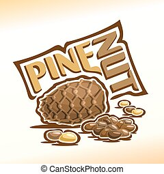 Cedar cone and pine nuts - Vector illustration on the theme...