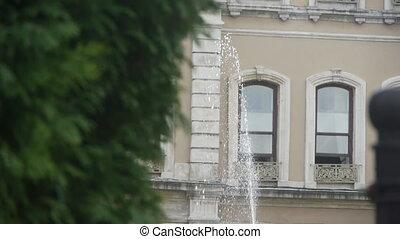 Garden fountain.