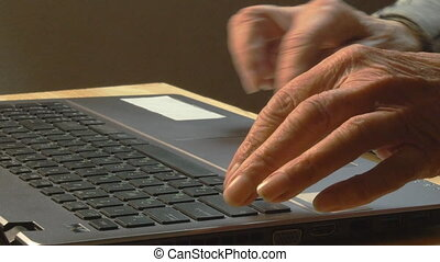 Old woman working with laptop