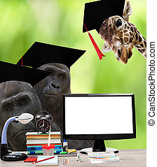 school supplies and African animals