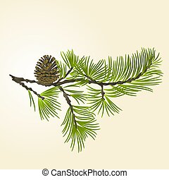 Branch Pine with pine cone vector.eps - Branch Pine and pine...