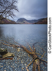 Buttermere Roots - Tree roots under the waters of Buttermere...