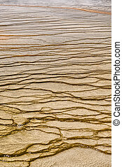 Patterns in the Grand Prismatic Spring - Algae patterns at...