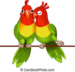 Pair of lovebirds agapornis-fischeri on white