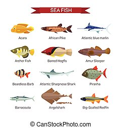 Fish vector set in flat style design. Ocean, sea and river fishes icons collection