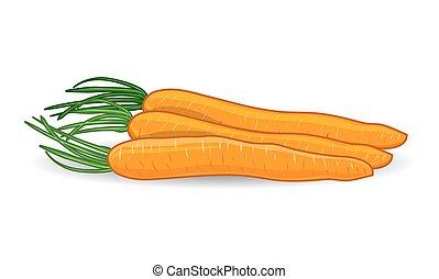 Freshness carrots over white background