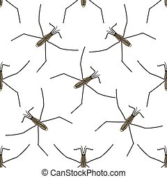 Seamless pattern with Common water strider. Gerridae. GERRIS...