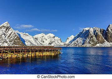 Reine, Lofoten Islands, Norway - Stockfish hanging in the...