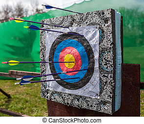 Targets at a bow shooting range with arrows in them