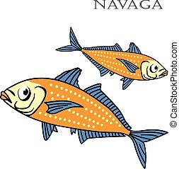 Nagava fish color cartoon vector illustration.
