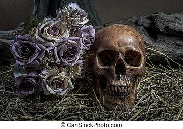 still life with human skull art abstract background - still...