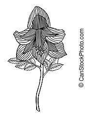 Hand drawn Flower - Monochrome Hand drawn Flower sketch...