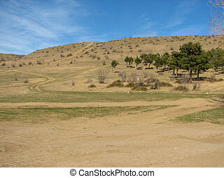 Hill covered of yellow grass under clear blue sky in Georgia...
