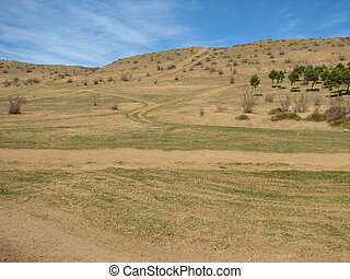 Hill covered of yellow grass under clear blue sky