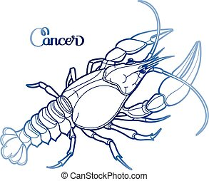 Graphic vector cancer