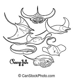 Graphic cramp fish collection drawn in line art style....