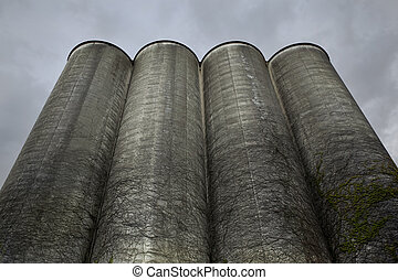 Old silos in the city - Silos in an industrial area in...