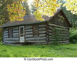 Cabin In the Woods - An old homestead cabin in rural...