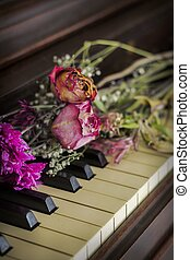 Old Piano Flowers - Old piano with dried roses atop the keys...