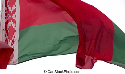 Flag Belarus in Slow motion - Flag of Republic of Belarus...