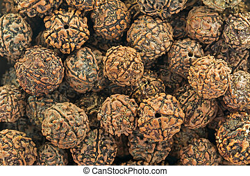 Closeup texture of Rudraksha scared seeds used as prayer...